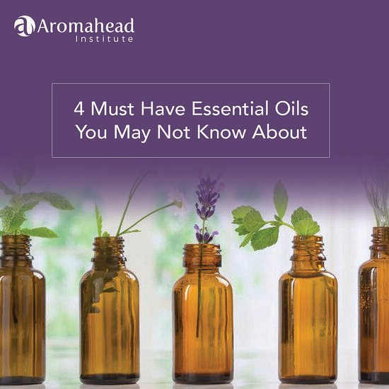 4 Must Have Essential Oils You May Not Know About