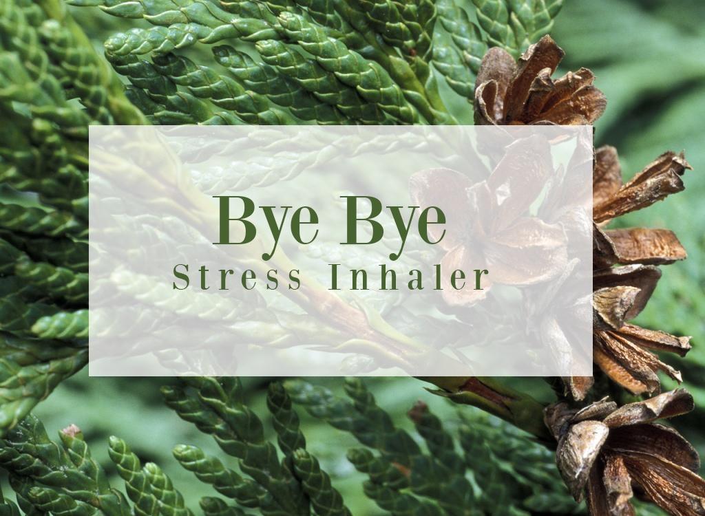Sweet Orange Essential Oil Bye Bye Stress Inhaler