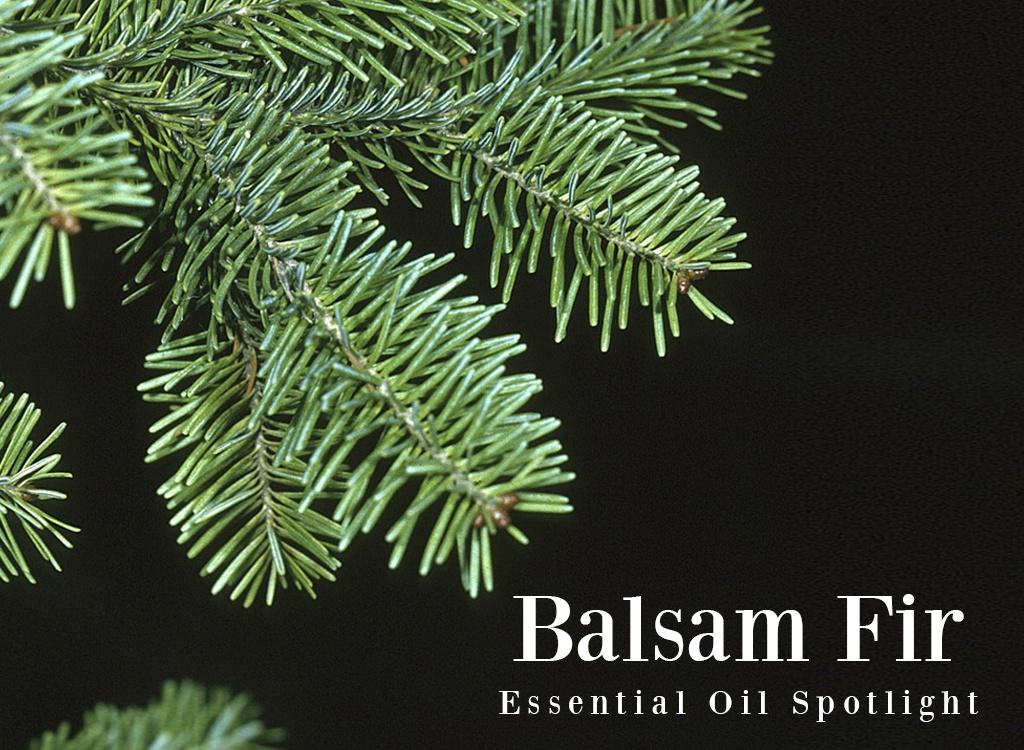 Balsam Fir Oil Uses