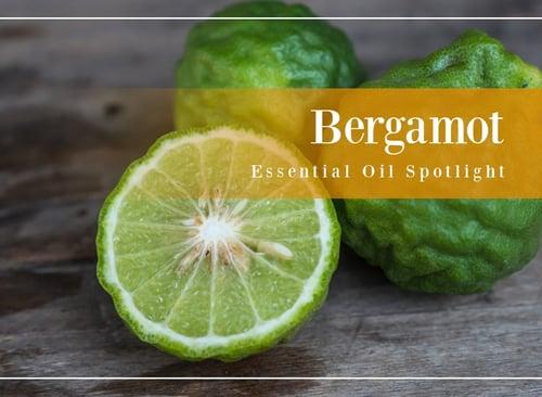 Bergamot Essential Oil Spotlight