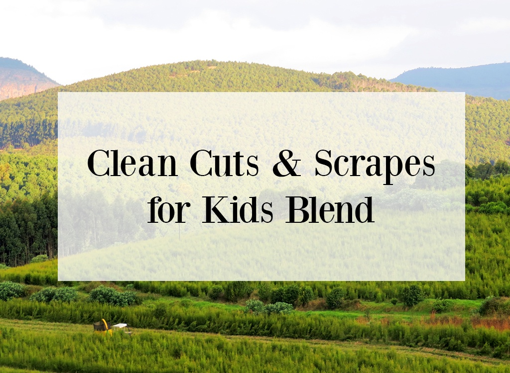 Tea Tree Essential Oil For Cuts and Scrapes for Kids