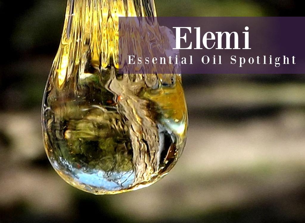 Elemi Essential Oil Spotlight