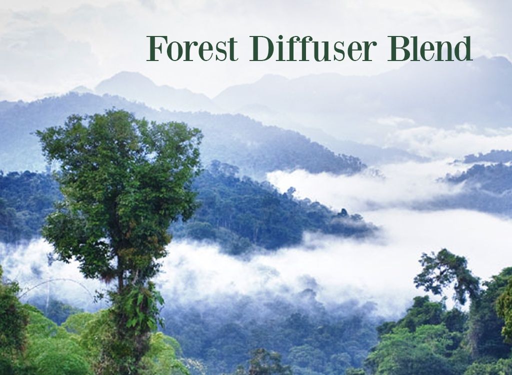 Cypress Oil Diffuser Blend