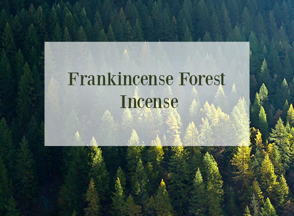 Frankinsence Oil Forest Incense