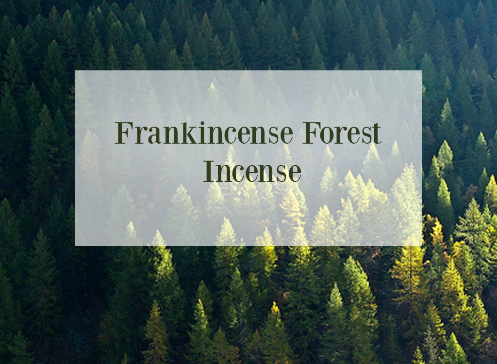 Frankinsence Oil Forest Incense