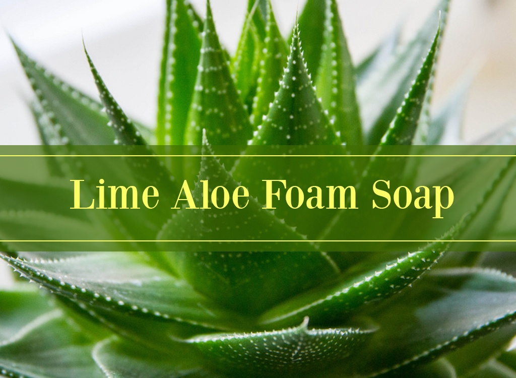 Lime Aloe Foam Soap