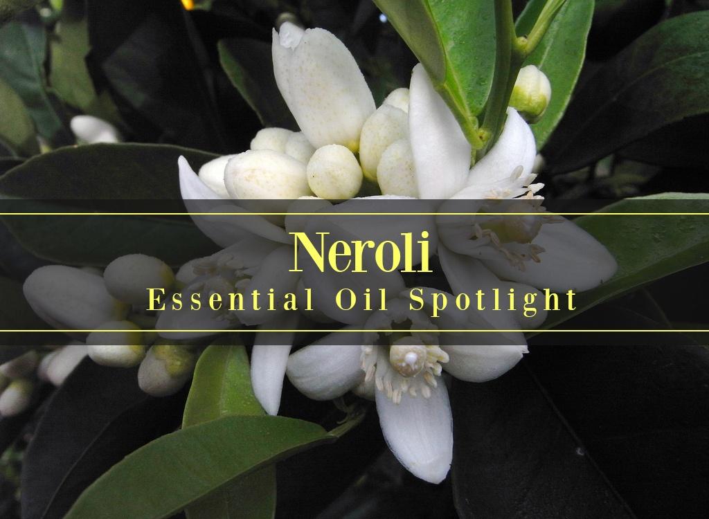 Neroli Essential Oil Uses