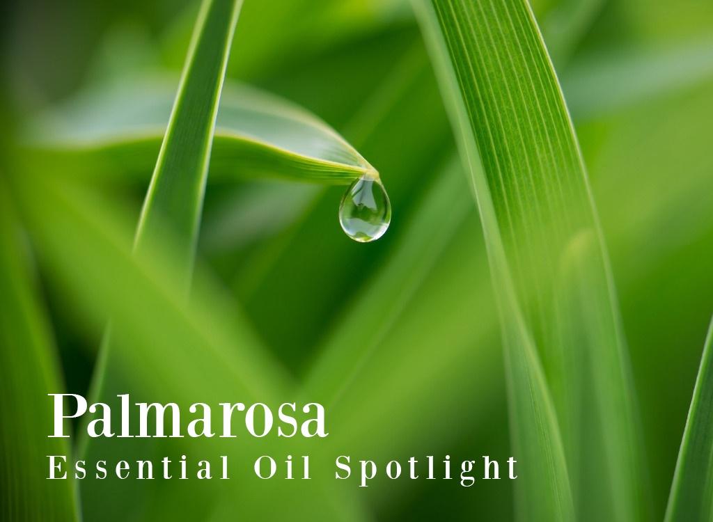 Palmarosa Essential Oil Uses