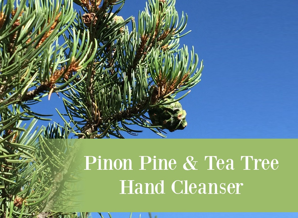 Pinon Pine and Tea Tree Hand Cleanser