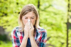 allergies sneeze