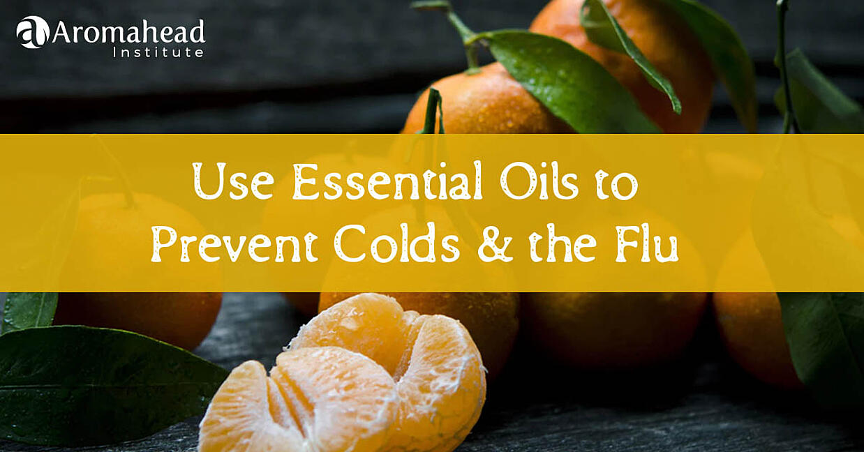 Use Essential Oils to Prevent Colds + the Flu!